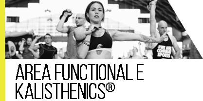 area functional & kalisthencis