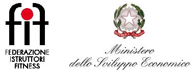 FIF Ministero Sviluppo
