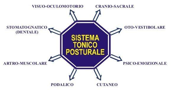 sistema tonico