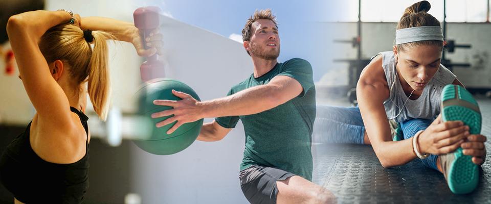 corso webinar fitness update & training