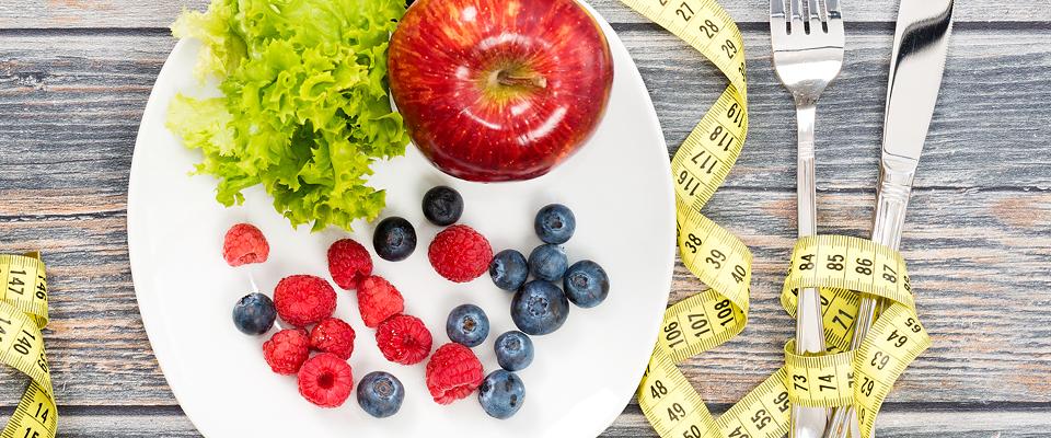 webinar dieta