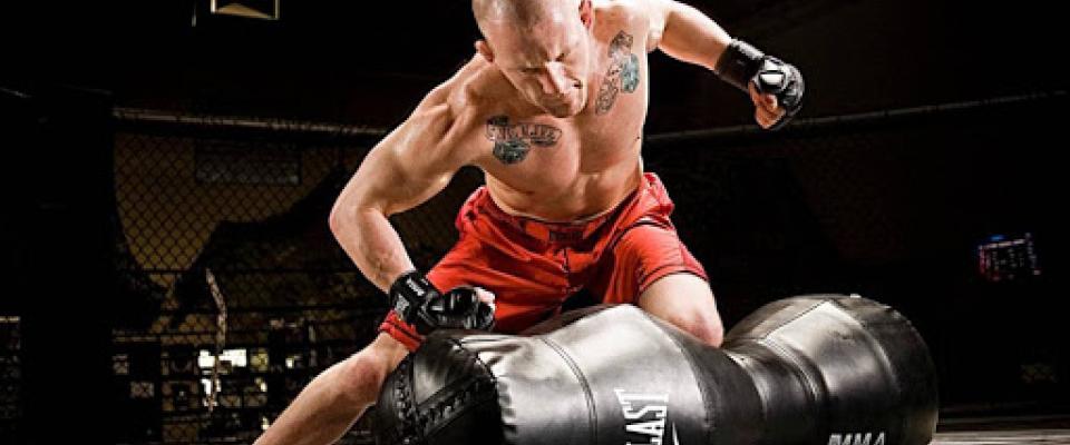 webinar preparazione atletica combat