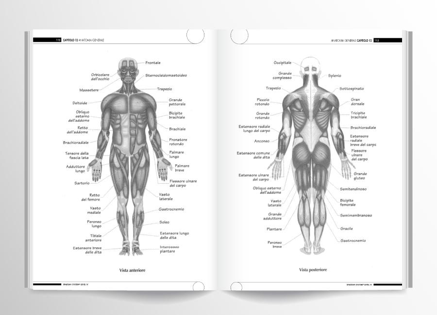 pagine interne spartan system level 4
